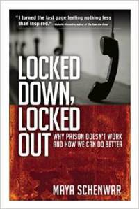 Locked Down Locked Out cover